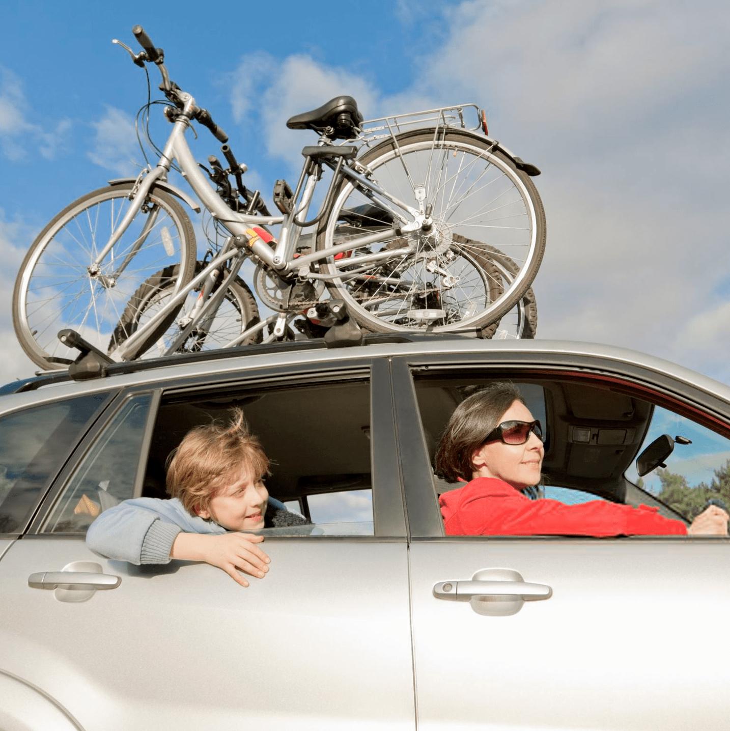 Suporte bike transbike